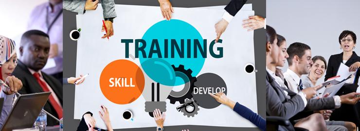 Business Sales Course